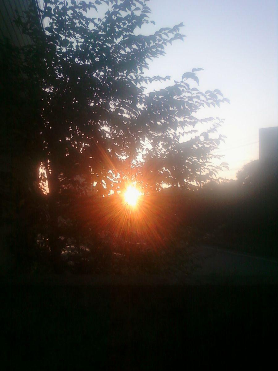 宇都宮 市 天気