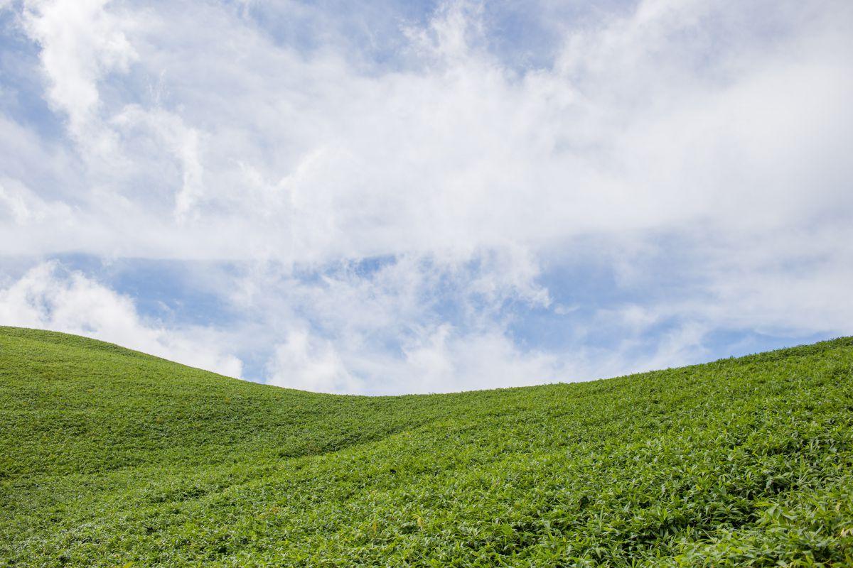 富士見台xp 自然 風景 高原 Ganref