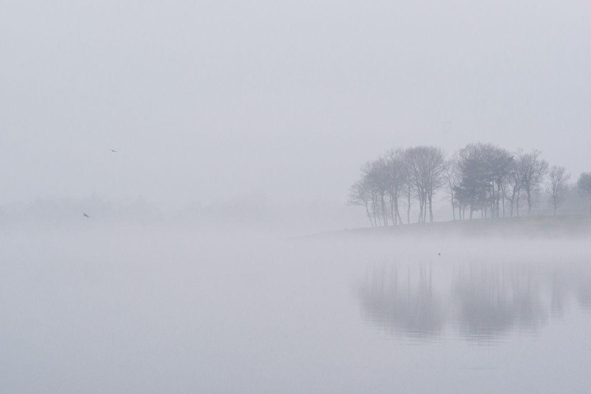 白い闇   自然・風景 > 湖沼   ...